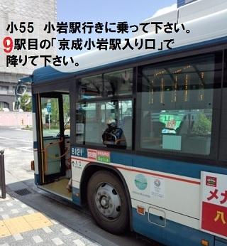 kanamachi05